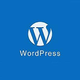 WordPress防止F12审查元素扒代码的两种方法
